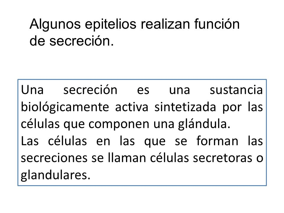 Algunos epitelios realizan función de secreción.