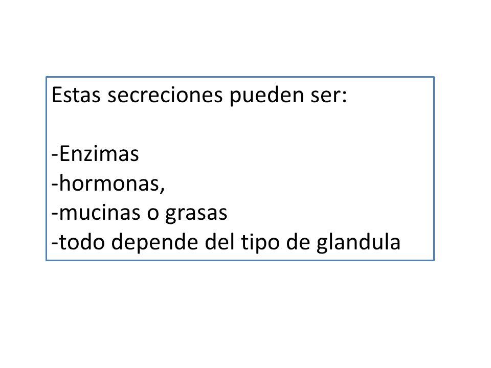 Estas secreciones pueden ser: