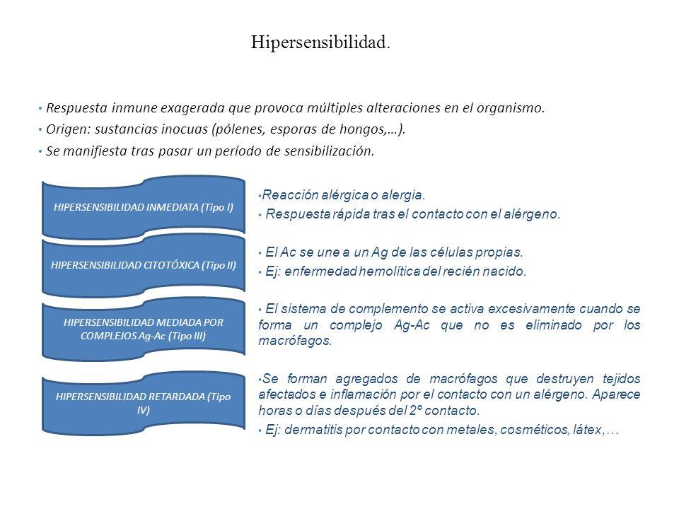 Hipersensibilidad. Respuesta inmune exagerada que provoca múltiples alteraciones en el organismo.