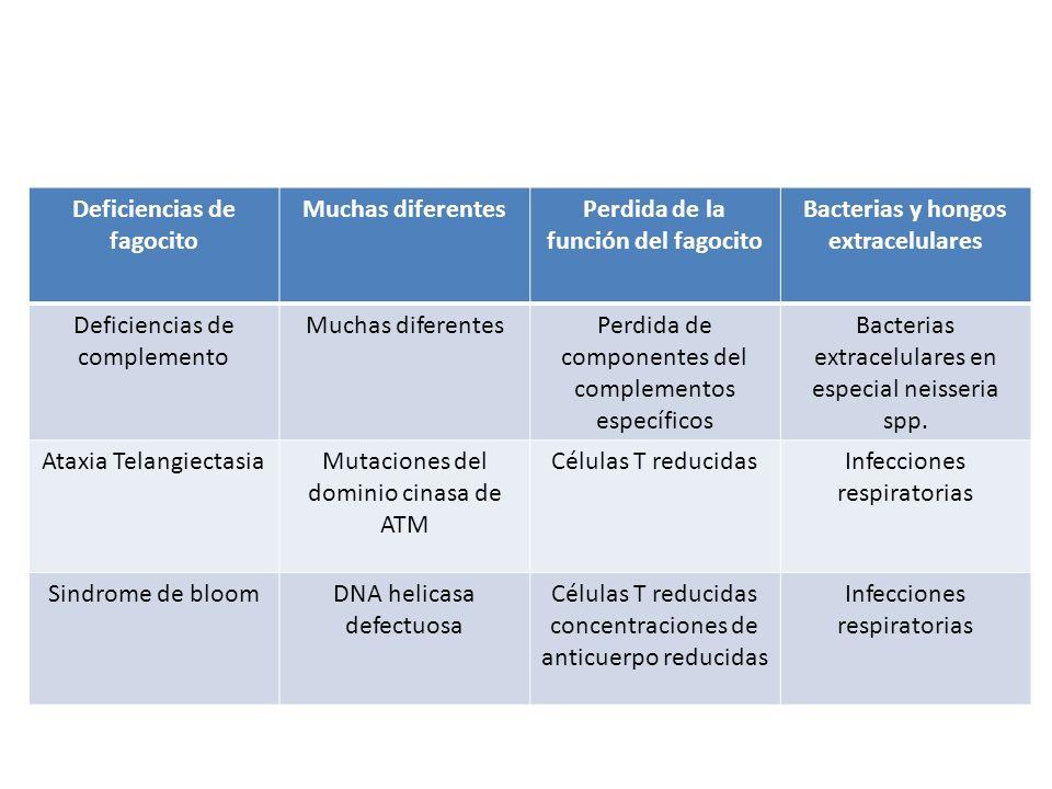 Deficiencias de fagocito Muchas diferentes