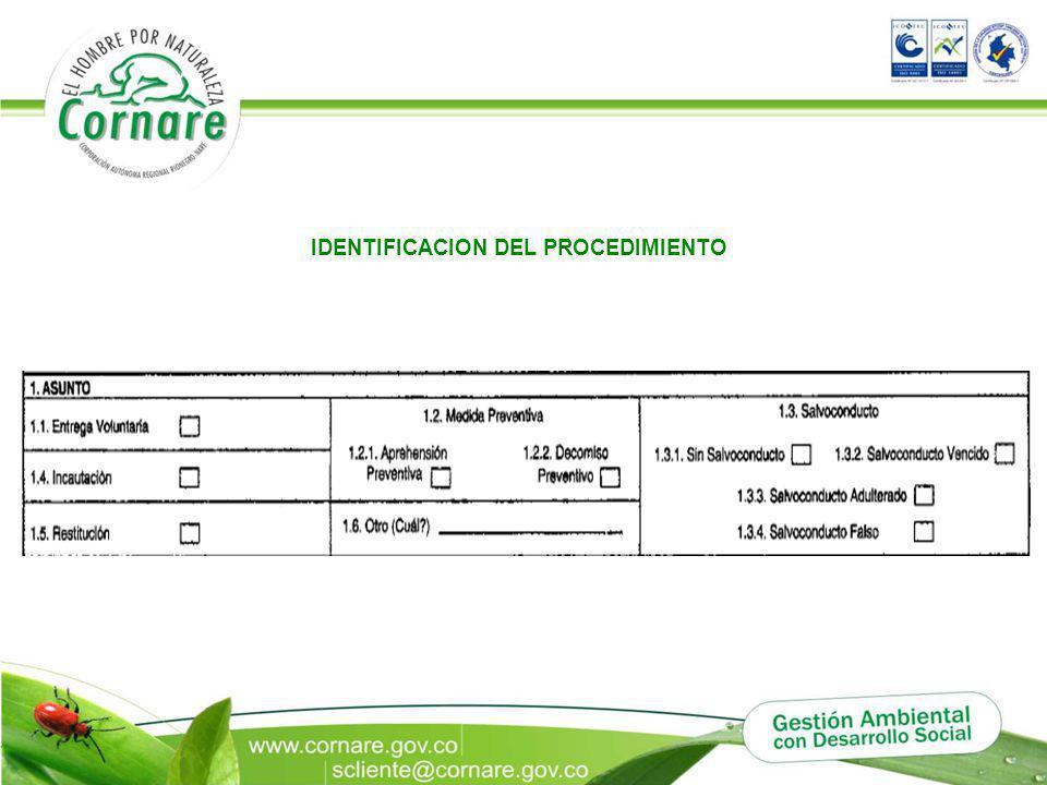 IDENTIFICACION DEL PROCEDIMIENTO