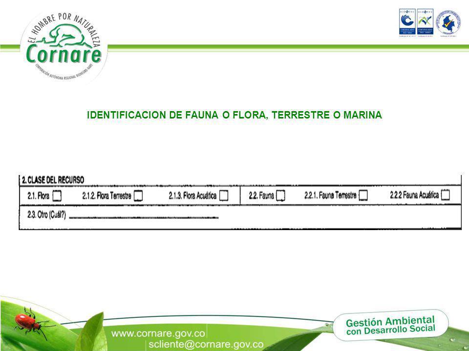 IDENTIFICACION DE FAUNA O FLORA, TERRESTRE O MARINA