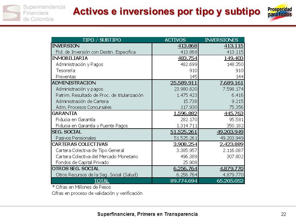 Activos e inversiones por tipo y subtipo