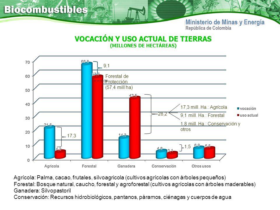 VOCACIÓN Y USO ACTUAL DE TIERRAS (MILLONES DE HECTÁREAS)