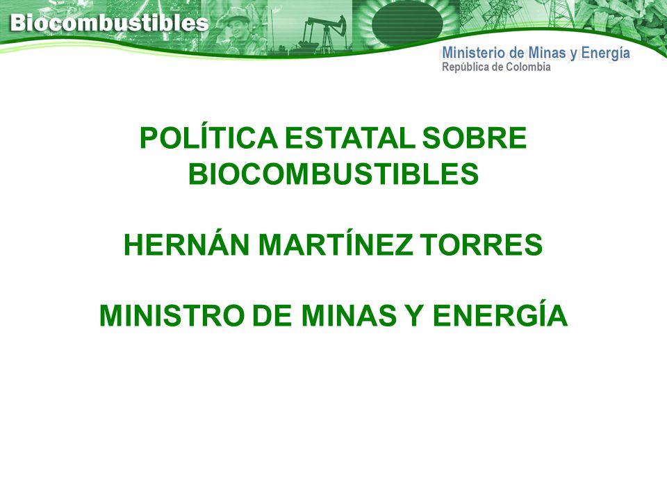 POLÍTICA ESTATAL SOBRE BIOCOMBUSTIBLES HERNÁN MARTÍNEZ TORRES