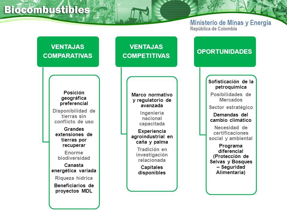 COMPARATIVAS VENTAJAS. Grandes extensiones de tierras por recuperar. Disponibilidad de tierras sin conflicto de uso.