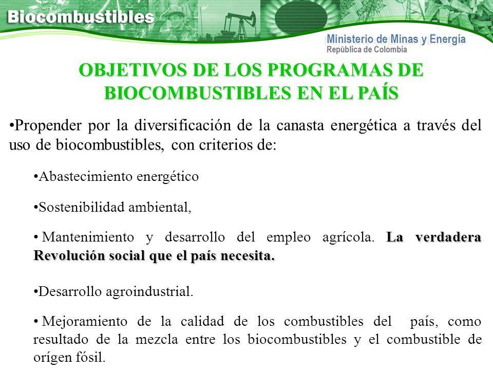 OBJETIVOS DE LOS PROGRAMAS DE BIOCOMBUSTIBLES EN EL PAÍS