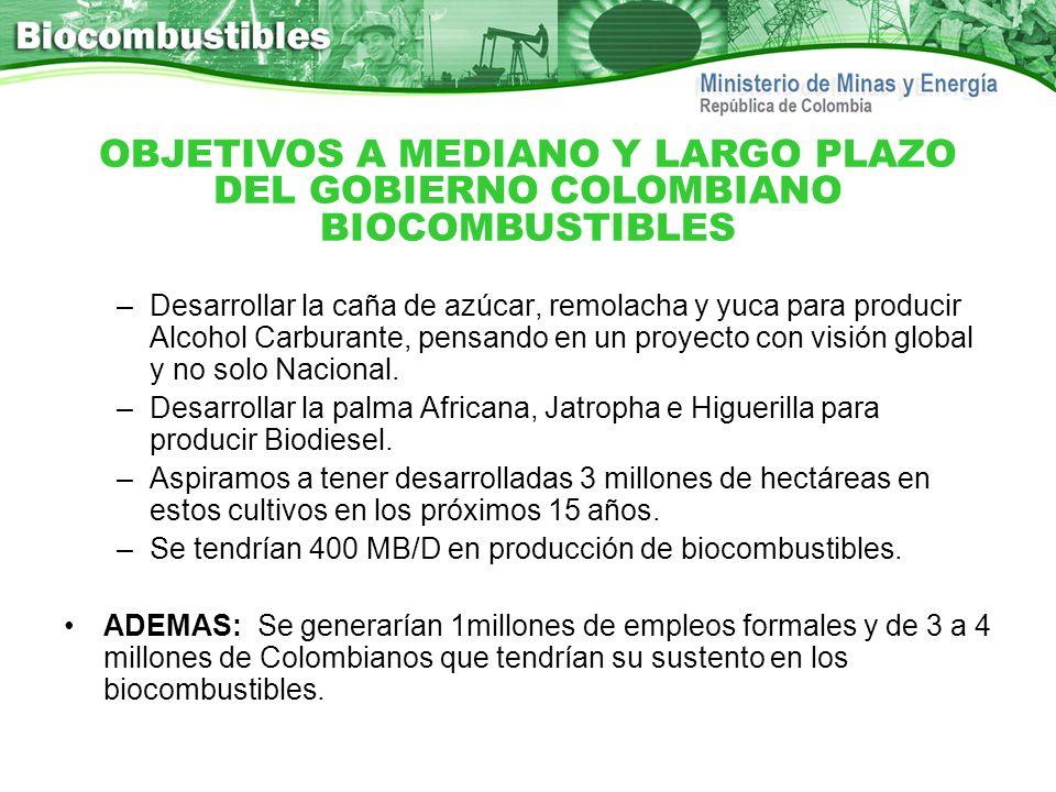 OBJETIVOS A MEDIANO Y LARGO PLAZO DEL GOBIERNO COLOMBIANO BIOCOMBUSTIBLES
