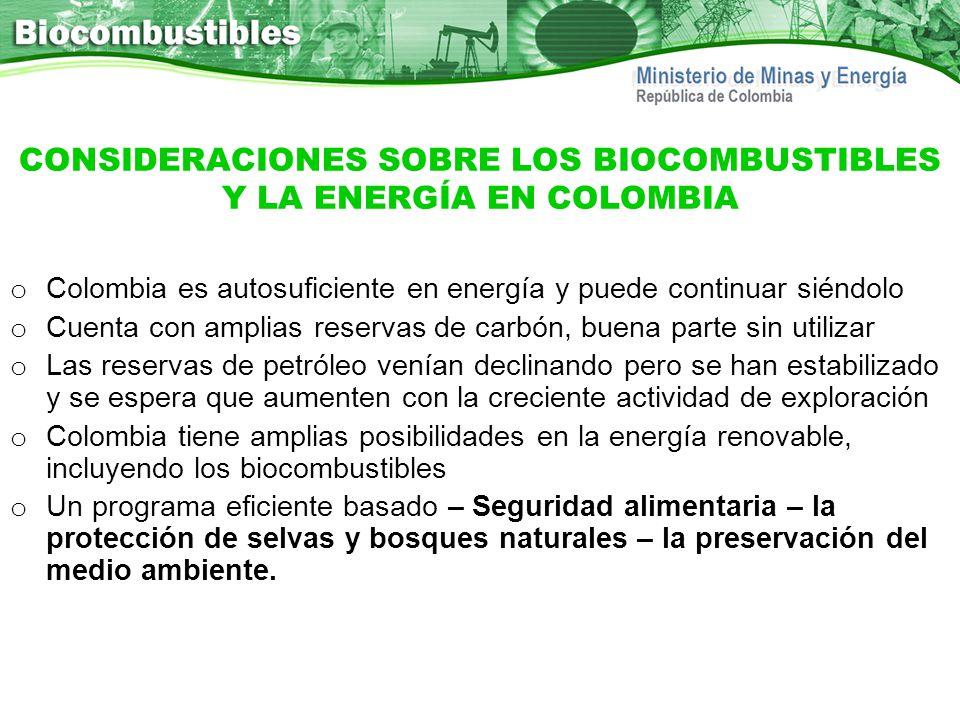 CONSIDERACIONES SOBRE LOS BIOCOMBUSTIBLES Y LA ENERGÍA EN COLOMBIA