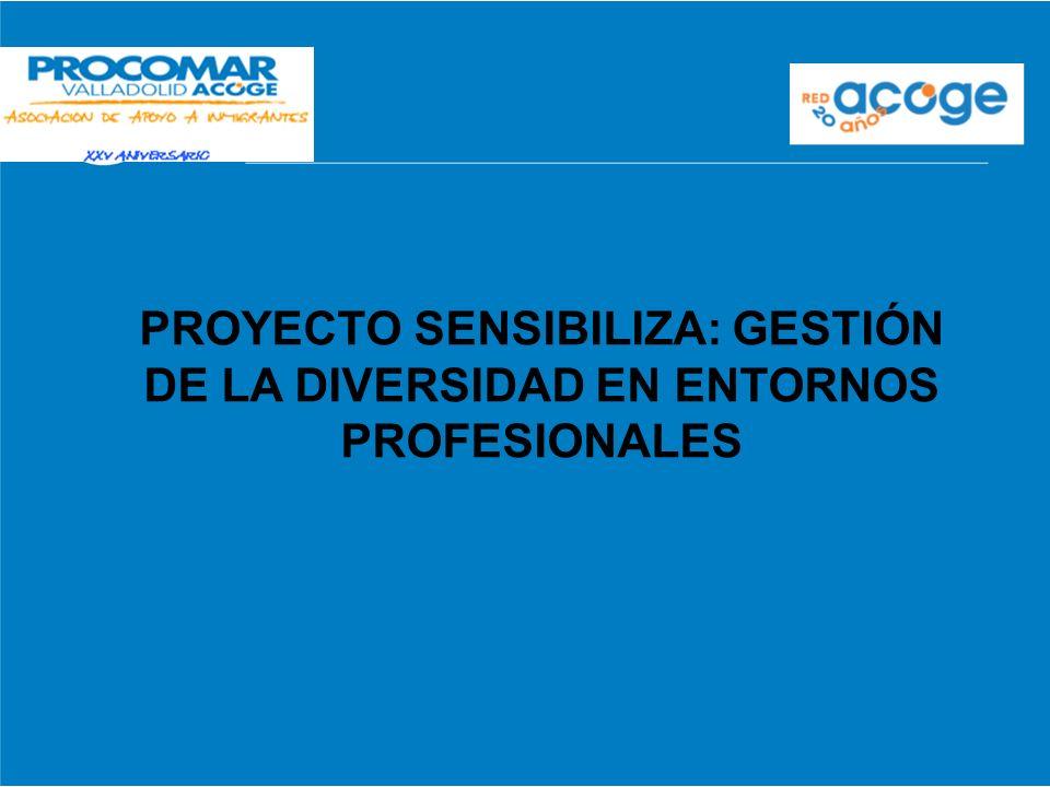 PROYECTO SENSIBILIZA: GESTIÓN DE LA DIVERSIDAD EN ENTORNOS PROFESIONALES