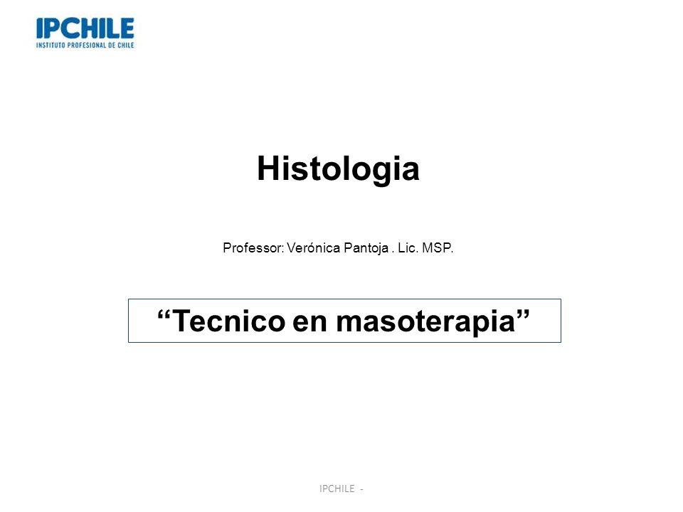 Tecnico en masoterapia