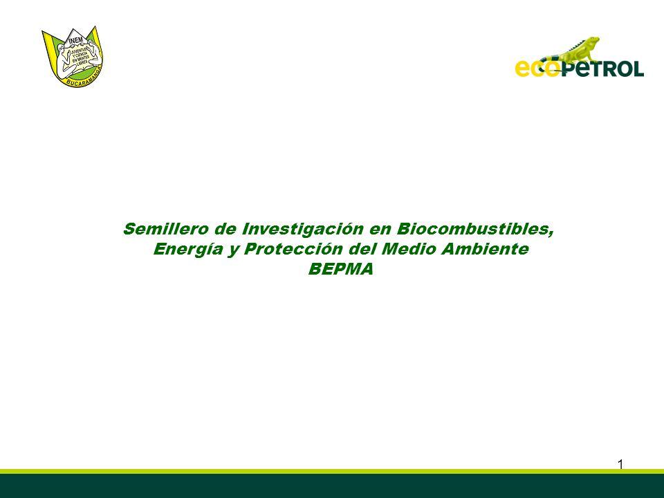 Semillero de Investigación en Biocombustibles,
