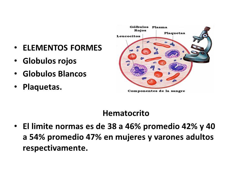 ELEMENTOS FORMES Globulos rojos. Globulos Blancos. Plaquetas. Hematocrito.