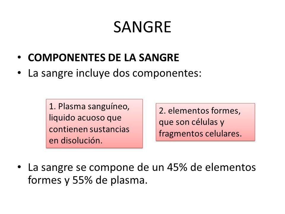 SANGRE COMPONENTES DE LA SANGRE La sangre incluye dos componentes: