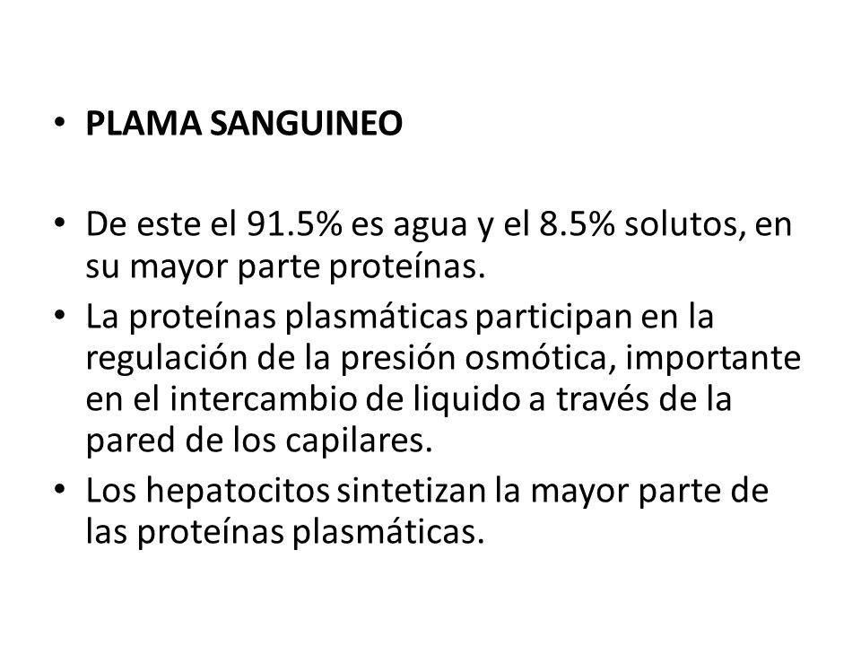 PLAMA SANGUINEO De este el 91.5% es agua y el 8.5% solutos, en su mayor parte proteínas.