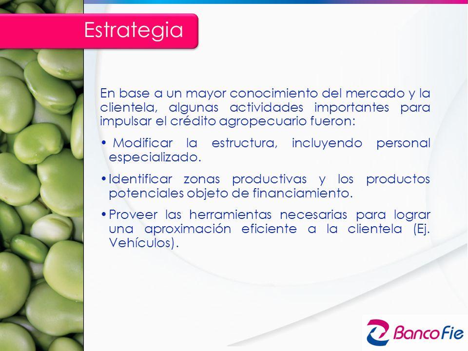 Estrategia En base a un mayor conocimiento del mercado y la clientela, algunas actividades importantes para impulsar el crédito agropecuario fueron: