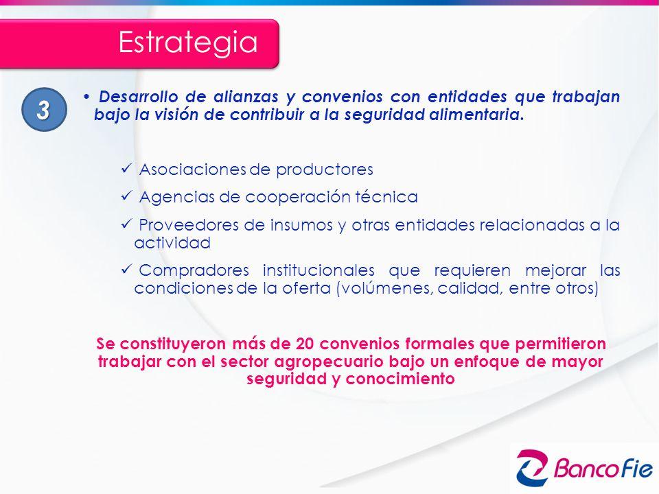 Estrategia 3. Desarrollo de alianzas y convenios con entidades que trabajan bajo la visión de contribuir a la seguridad alimentaria.