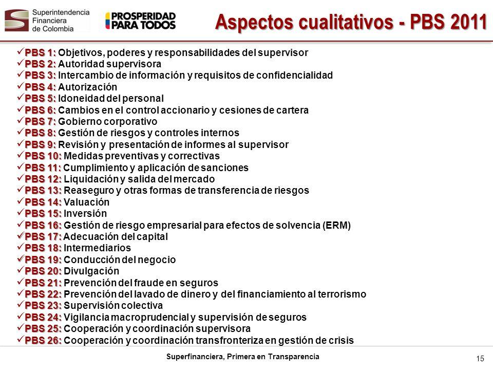 Aspectos cualitativos - PBS 2011