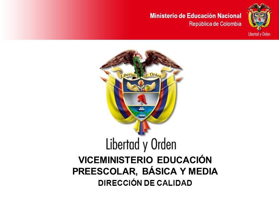 VICEMINISTERIO EDUCACIÓN PREESCOLAR, BÁSICA Y MEDIA