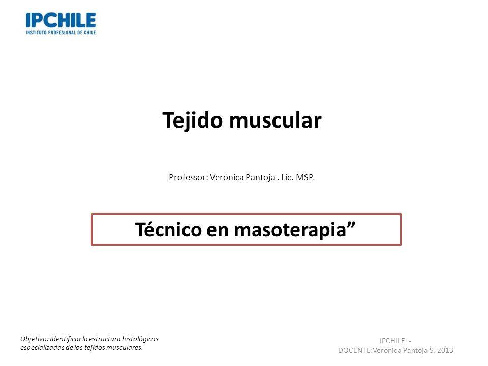 Técnico en masoterapia