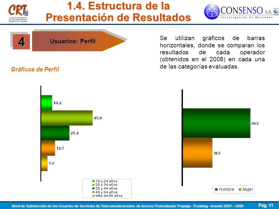 1.4. Estructura de la Presentación de Resultados