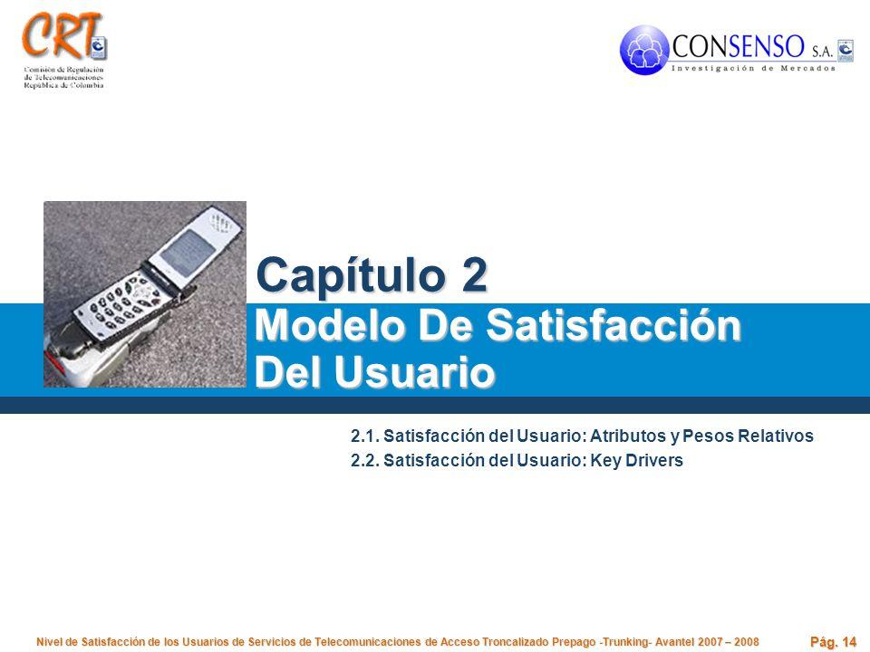 Capítulo 2 Modelo De Satisfacción Del Usuario