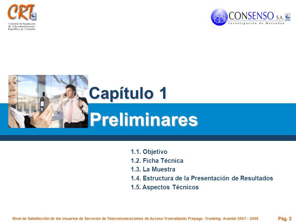 Preliminares Capítulo 1 1.1. Objetivo 1.2. Ficha Técnica