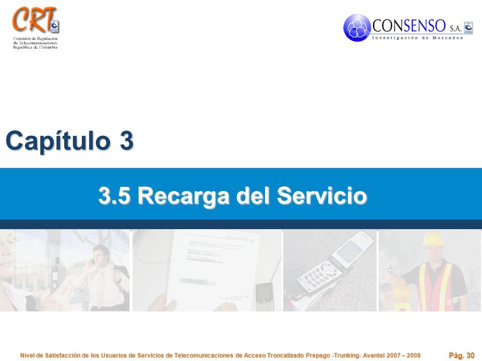 Capítulo 3 3.5 Recarga del Servicio