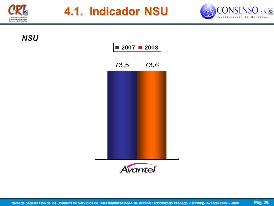 4.1. Indicador NSU NSU