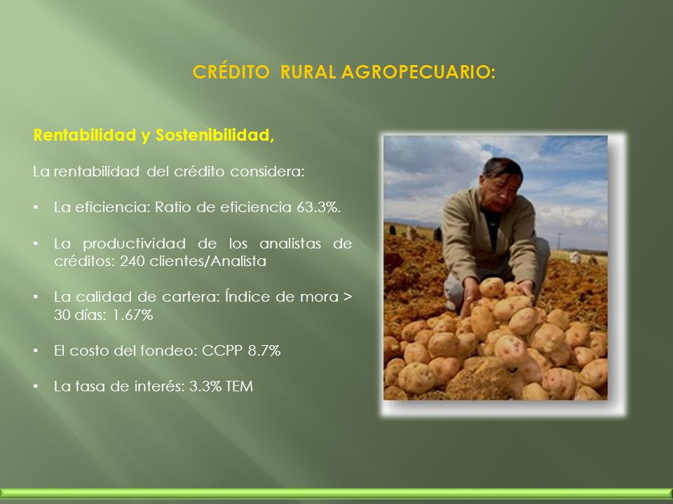 CRÉDITO RURAL AGROPECUARIO: