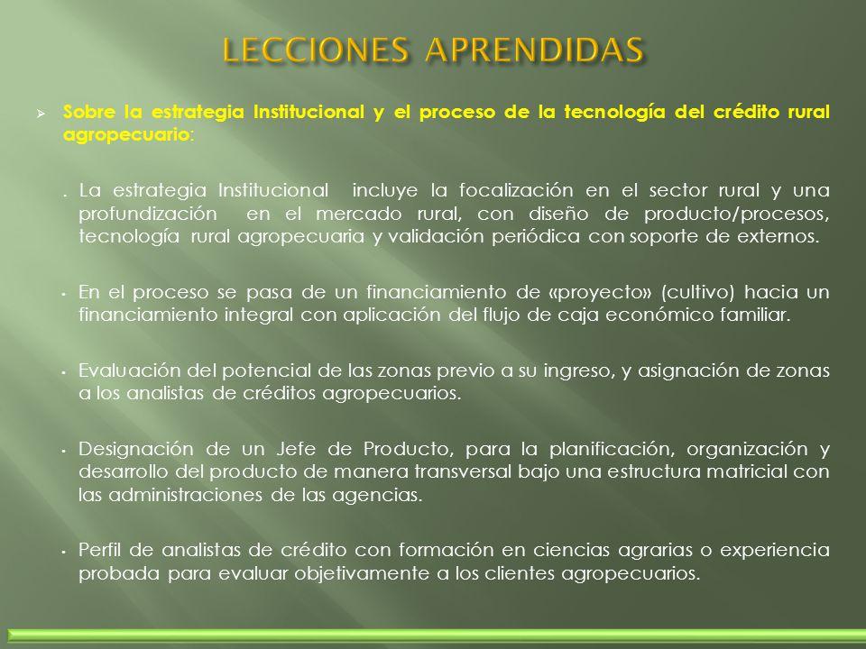 LECCIONES APRENDIDAS Sobre la estrategia Institucional y el proceso de la tecnología del crédito rural agropecuario: