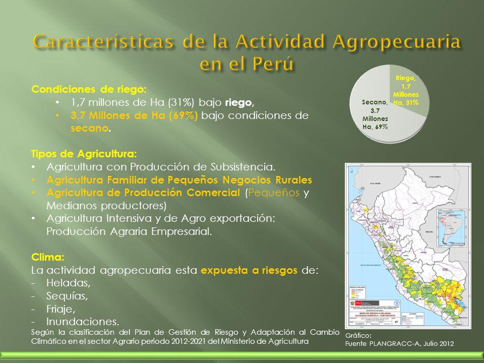 Características de la Actividad Agropecuaria en el Perú