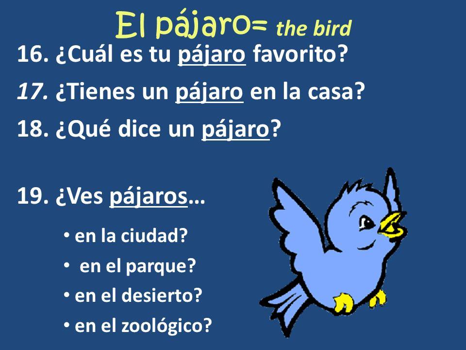 El pájaro= the bird 16. ¿Cuál es tu pájaro favorito