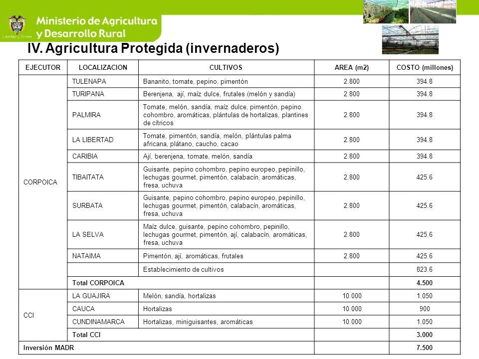 IV. Agricultura Protegida (invernaderos)