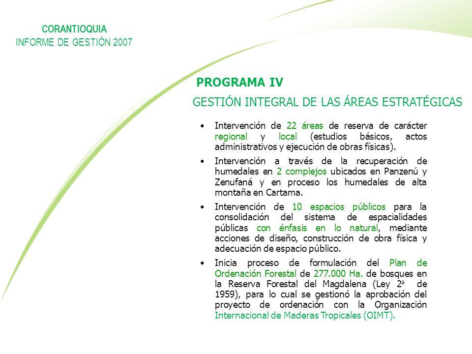 Bienvenidos ppt descargar for Importancia economica ecologica y ambiental de los viveros forestales