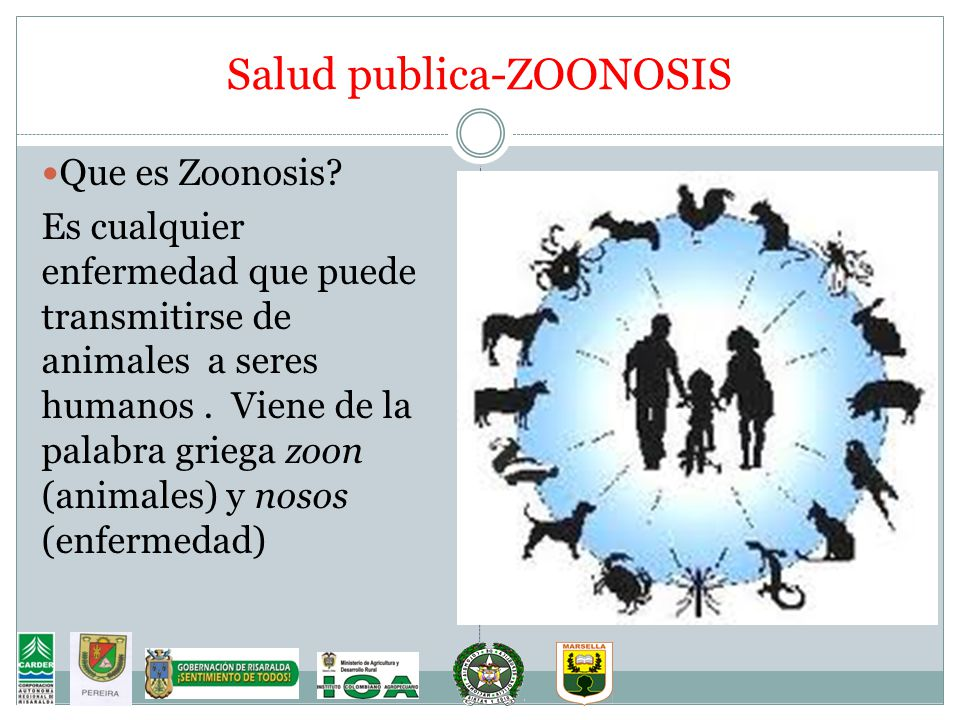Salud publica-ZOONOSIS