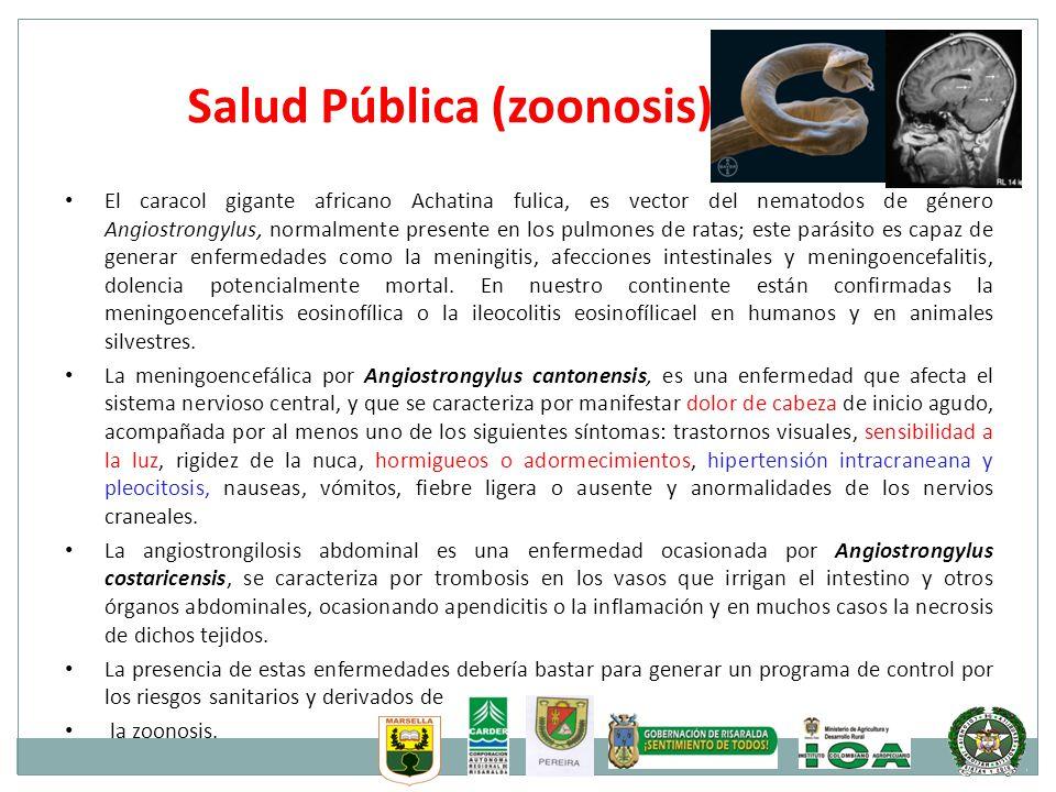 Salud Pública (zoonosis)
