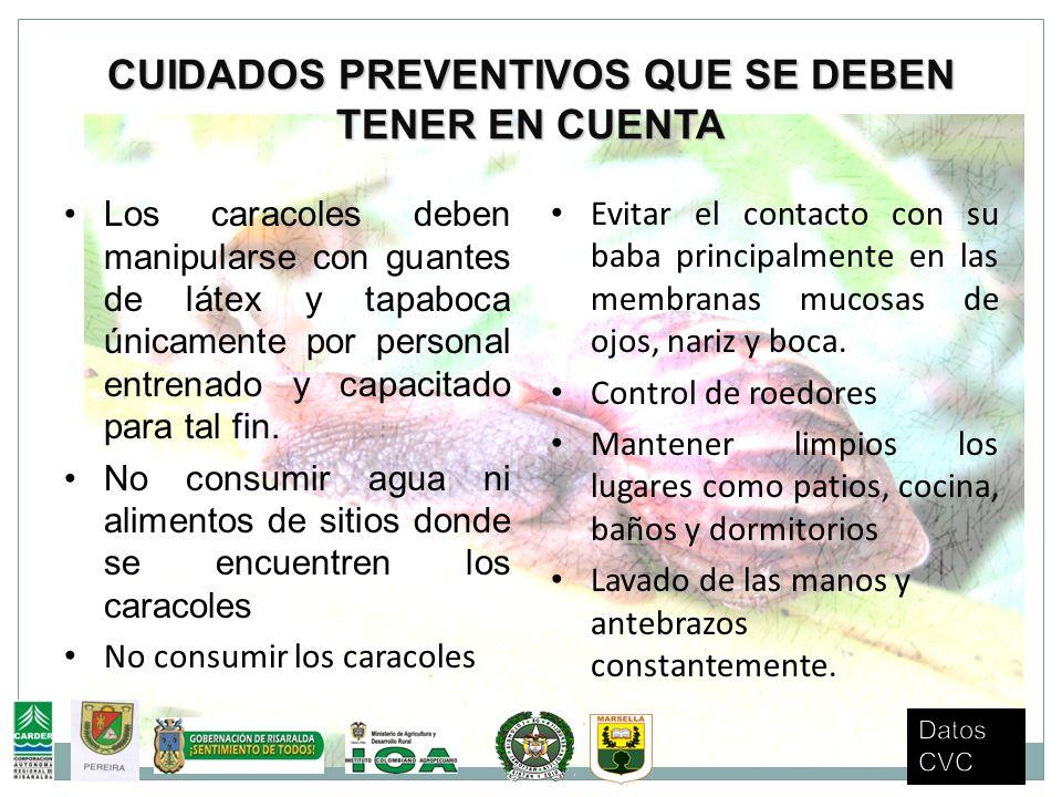 CUIDADOS PREVENTIVOS QUE SE DEBEN TENER EN CUENTA