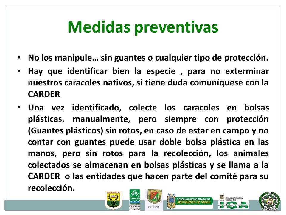 Medidas preventivas No los manipule… sin guantes o cualquier tipo de protección.