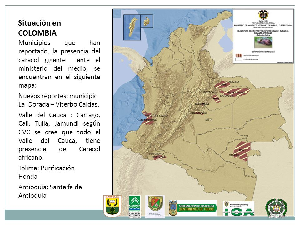 Situación en COLOMBIA