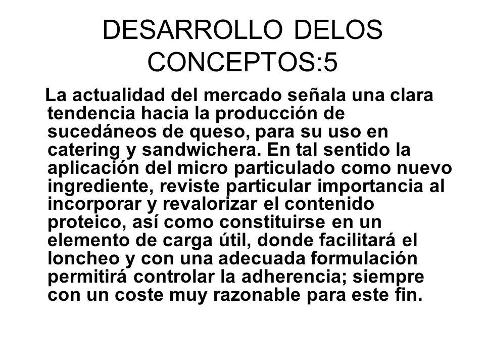 DESARROLLO DELOS CONCEPTOS:5