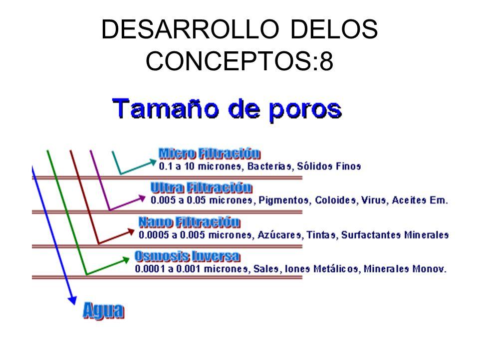 DESARROLLO DELOS CONCEPTOS:8