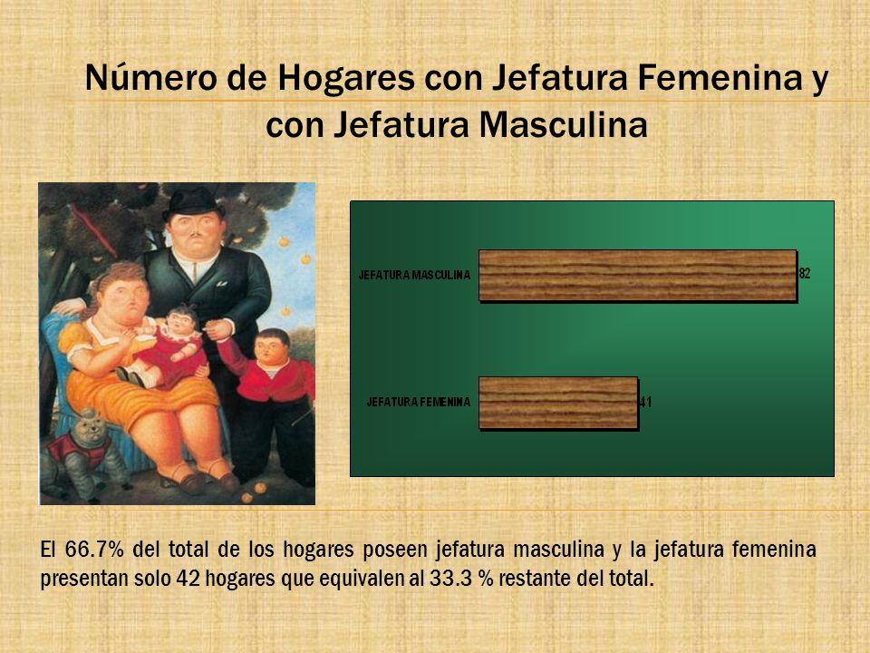 Número de Hogares con Jefatura Femenina y con Jefatura Masculina