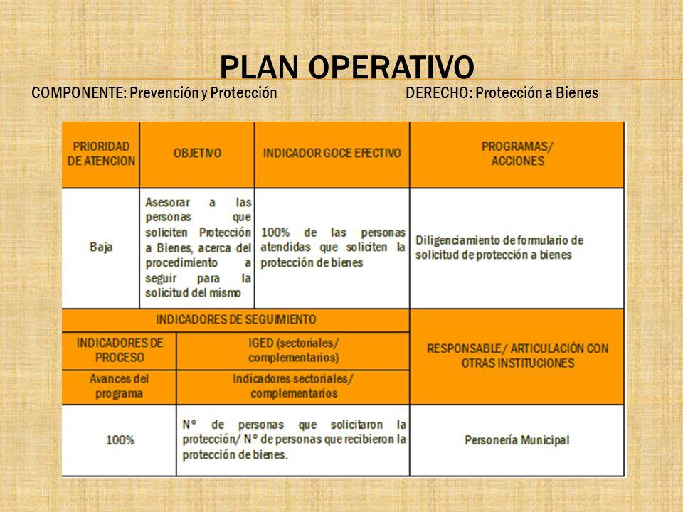 PLAN OPERATIVO COMPONENTE: Prevención y Protección DERECHO: Protección a Bienes.