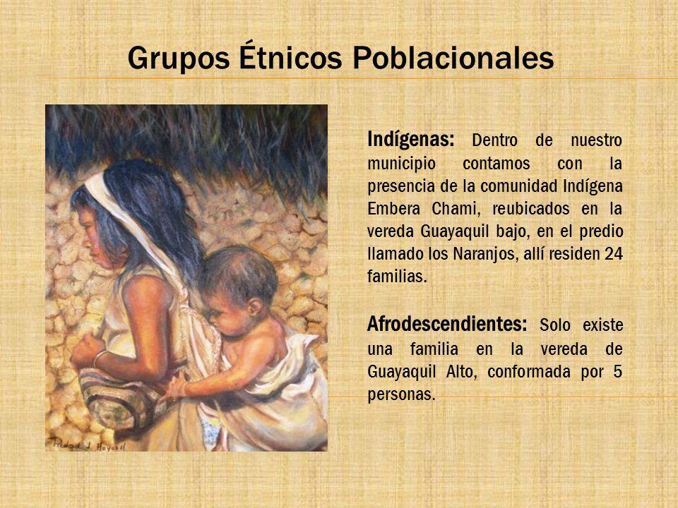 Grupos Étnicos Poblacionales