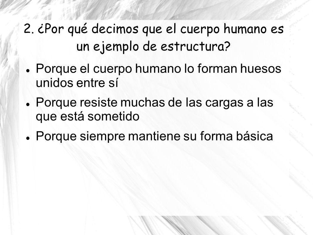 2. ¿Por qué decimos que el cuerpo humano es un ejemplo de estructura