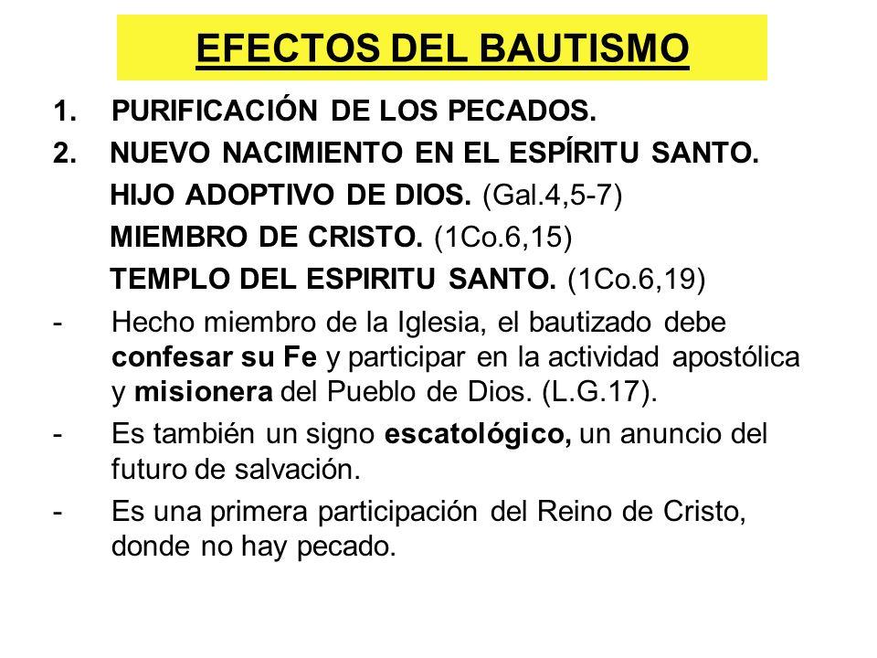 EFECTOS DEL BAUTISMO PURIFICACIÓN DE LOS PECADOS.