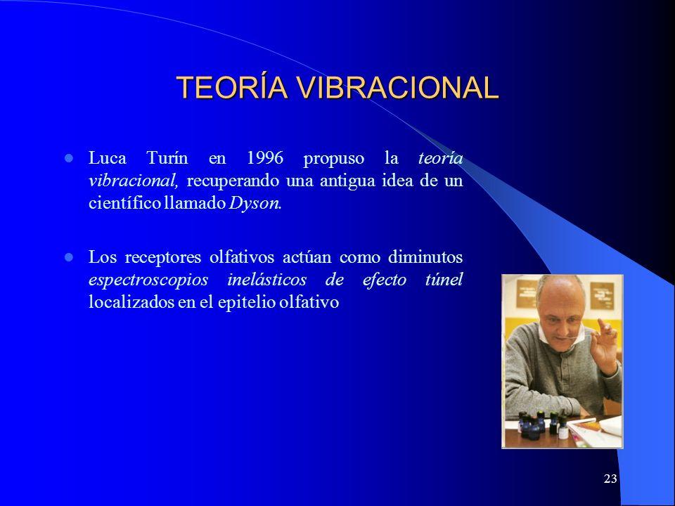 TEORÍA VIBRACIONAL Luca Turín en 1996 propuso la teoría vibracional, recuperando una antigua idea de un científico llamado Dyson.