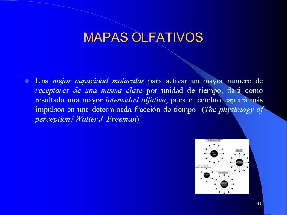 MAPAS OLFATIVOS