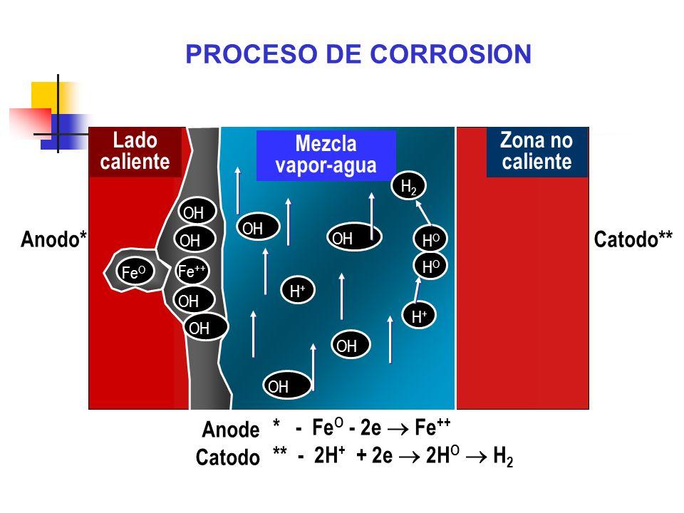PROCESO DE CORROSION Lado caliente Mezcla vapor-agua Zona no caliente